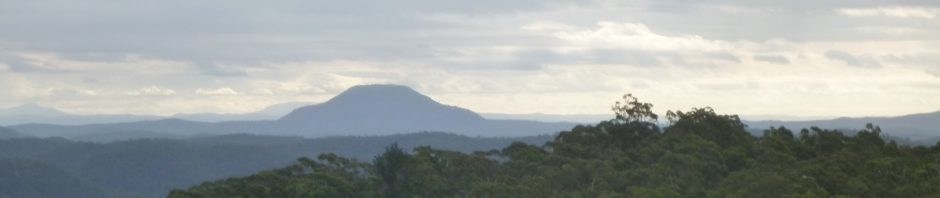 Mt Yengo in the distance